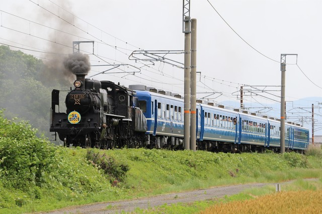 C56-160けん引のSL北びわこ号