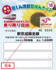 楽しみ満載夏休みきっぷ(大人用イメージ)