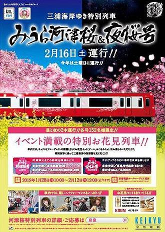 特別お花見列車