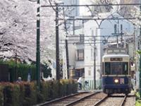 都電さくら号(イメージ)