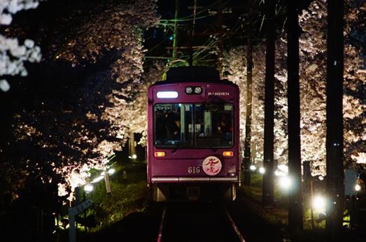 夜桜電車(イメージ)