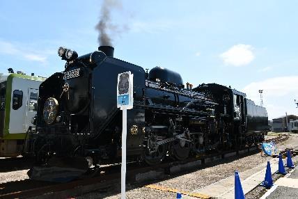 C58-239