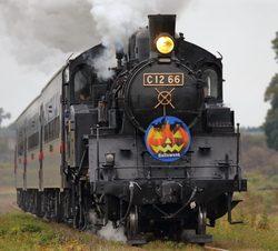 真岡鐵道 SLもおか ハロウィンヘッドマーク 掲出