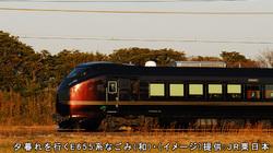 E655系 新宿~長野間(ツアー)