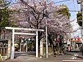 /stat.ameba.jp/user_images/20170419/00/dinopapa/7e/29/j/o1000075013917194744.jpg