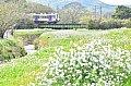 /blogimg.goo.ne.jp/user_image/27/1c/836daa80bd54f9d1e686dea507396e6d.jpg