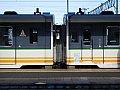 DSCN0398
