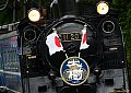SL大樹 祝賀列車