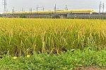 /blogimg.goo.ne.jp/user_image/36/d3/bf953fe509f985eae8874ed43704d643.jpg