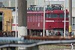 /blogimg.goo.ne.jp/user_image/7e/8d/7319492fe0f97fe8fae05622f251c577.jpg