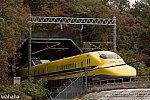 291120nagasaka_dyb.jpg