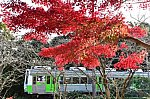 /blogimg.goo.ne.jp/user_image/79/66/bbc70647c96cec3f3fe75d22cdb12920.jpg