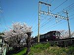 /blogimg.goo.ne.jp/user_image/72/60/072d85422bd4688ec4f7a931a44409e0.jpg
