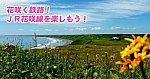 /img01.shiga-saku.net/usr/e/b/a/ebatetsu/app-071711400s1524192858.jpg