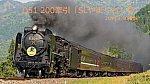 /rail.travair.jp/wp-content/uploads/2018/05/D51200-530x298.jpg