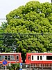 /stat.ameba.jp/user_images/20180509/22/dinopapa/86/94/j/o0750100014187724536.jpg