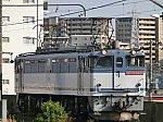 1753レ EF65-2088号機単機(尻手駅)