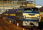 181110 JRF EF6627 seino exp 1