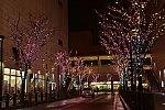 /blogimg.goo.ne.jp/user_image/30/c9/95cfbebe46f5ed562d3f2d4888fb0697.jpg