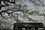 /img01.shiga-saku.net/usr/e/b/a/ebatetsu/app-039643400s1545168095.jpg