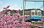 /stat.ameba.jp/user_images/20190224/06/tohchanne/79/7f/j/o0600038814361397842.jpg