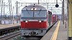 DSC02981.jpg