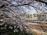 東急東横線 横浜高速鉄道Y500系