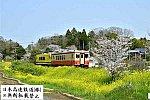 mini_DSC_4281.jpg