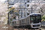 満開の桜の下を行く神戸電鉄6500系6509×3