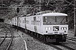 FH000035 函南駅 踊り子