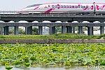 010622kanagaskai_sinkansen-1.jpg
