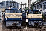 Img3391