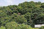 /stat.ameba.jp/user_images/20190701/23/dinopapa/e6/56/j/o1000066714488727705.jpg