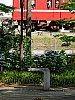 /stat.ameba.jp/user_images/20190709/23/dinopapa/0d/e2/j/o0750100014497330203.jpg