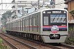 D32553.jpg