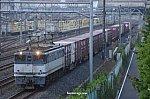 190729_EF65-1095_3079r.jpg