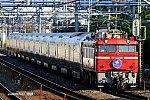 8009レ EF81139 蕨~南浦和 2019.08.17
