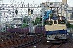 IMGP6200.jpg
