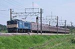 DSC_1061