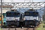 DSC_5850-1