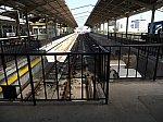 /i1.wp.com/railrailrail.xyz/wp-content/uploads/2019/09/D0000569.jpg?fit=800%2C600&ssl=1