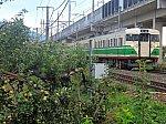 /blogimg.goo.ne.jp/user_image/32/5c/76ca898bb541d818eefb09da1fc099f6.jpg
