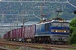 IMGP6652.jpg