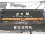 tk-miyanosaka-1.jpg