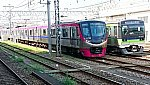 1092-1 ラグビーラッピング 5033F 高幡不動.jpg