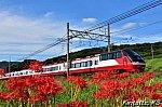 /blogimg.goo.ne.jp/user_image/06/9c/beda935fc613c53ed2da09ed9ec81568.jpg
