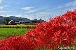 /blogimg.goo.ne.jp/user_image/24/f6/d5a351b18fecbd242519ecdc6909ab5b.jpg