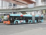 oth-bus-81.jpg