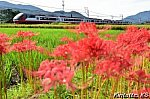 /blogimg.goo.ne.jp/user_image/60/b4/63719653f6237f6b8d305b569a331857.jpg
