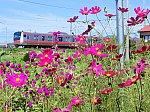 /stat.ameba.jp/user_images/20191009/15/wakashio2gou/c7/a3/j/o1024077114610613279.jpg